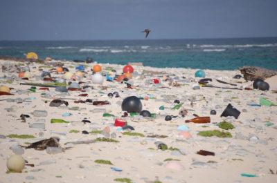 浜辺のプラスチックごみ